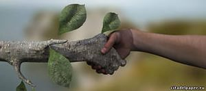 livre propre livre propre | book & ecology | чистая книга